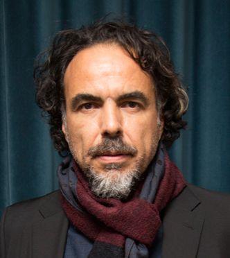 بیوگرافی آلخاندرو گونزالس ایناریتو