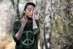 بیوگرافی آفرید غفاریان به همراه داستان زندگی شخصی و عکس های اینستاگرامی